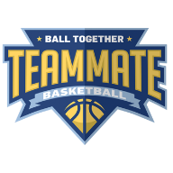 Teammate Basketball